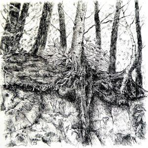Wakehurst rock face, litho, Harriet Brigdale, Artist