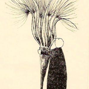 Garden theft great dixter seed, Harriet Brigdale, litho
