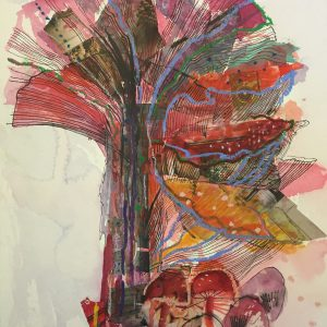 Mushrooms, Drawing, Harriet Brigdale, Artist