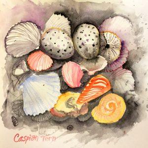 Caspian tern sketchbook watercolour, Harriet Brigdale, Artist