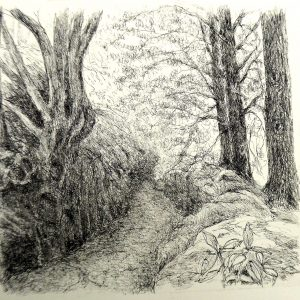 Wakehurst path, litho, Harriet Brigdale, Artist