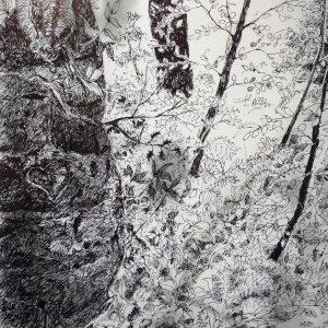 Wakehurst heart, litho, Harriet Brigdale, Artist